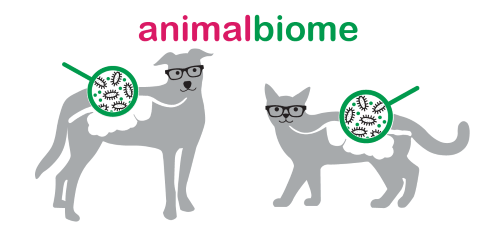 animal-biome_sq