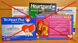 oral-heartworm-prevention